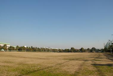 若松公園野球場