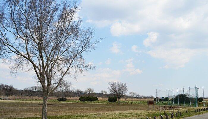 利根川ゆうゆう公園 野球場
