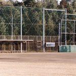 蓮沼野球場