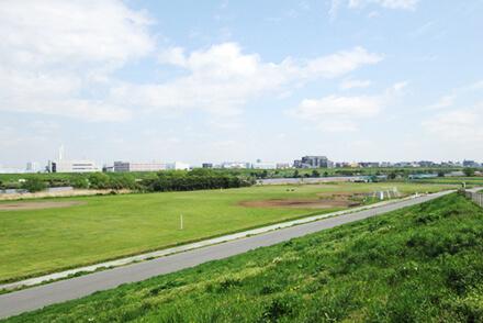 荒川戸田橋緑地(戸田硬軟兼用野球場)