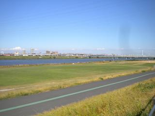 荒川四ツ木橋緑地 野球場