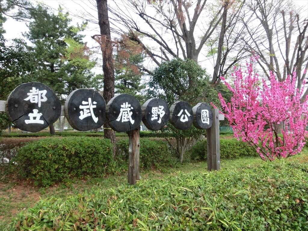 羽村市立武蔵野公園(軟式野球場/庭球場)