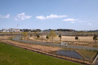 新横浜公園(野球場/運動広場/テニスコート)