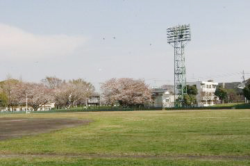 大師球場(野球場/テニスコート)