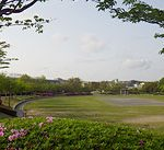 日野中央公園(野球場/テニスコート)
