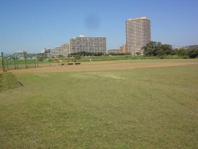 小向仲野町野球場