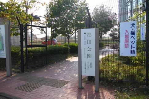 都田公園(運動広場/テニスコート)