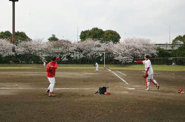 入船公園(野球場/テニスコート)