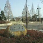 横山公園(野球場/人工芝/テニスコート)