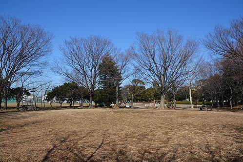 大原公園(野球場/テニスコート)