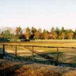 入間市中央公園(野球場/テニスコート/プール)