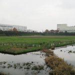 児玉工業団地遊水池内グラウンド