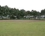 大間木公園(ソフトボール場/サッカー場)