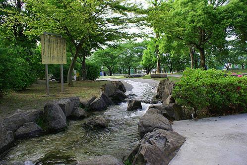 若泉運動公園(野球場/サッカー場/ソフトボール場)