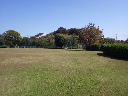 八潮南公園(野球場/ソフトボール場)