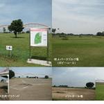 鴻巣市吹上荒川総合運動公園(コスモスアリーナふきあげ)