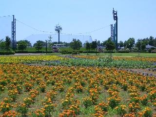 茎崎運動公園