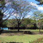かしの森公園