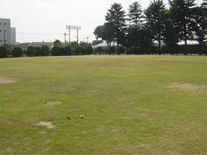 大泉町南公園
