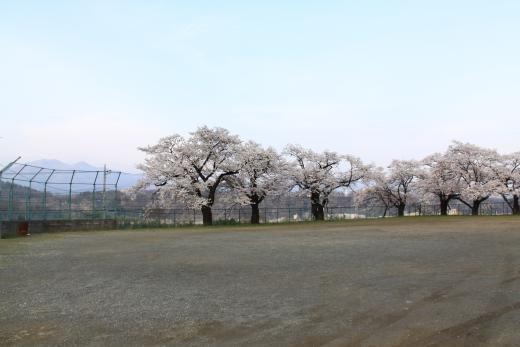 清哲スポーツ広場