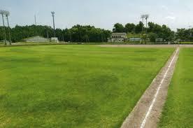 和島野球場